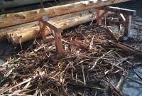 桧丸太の皮むき作業